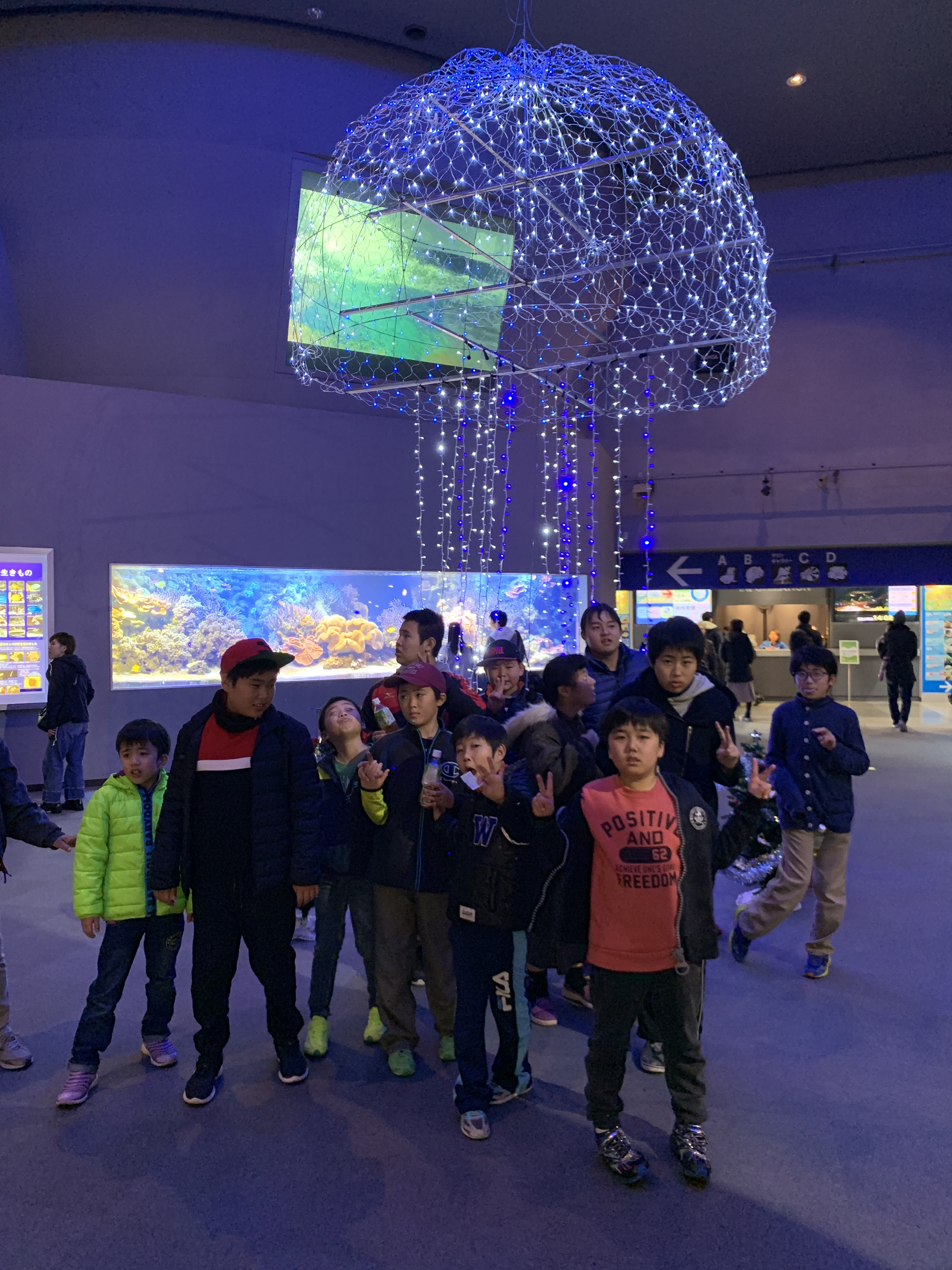子どもたちと鳥羽水族館に行きました!